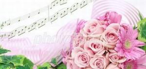 rose400