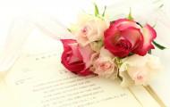 rose-660